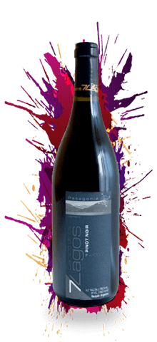 """CAMINO DE LOS 7 LAGOS """"Pinot Noir"""""""